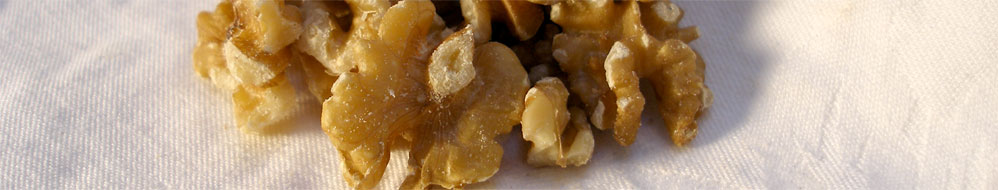 GB Commtrade - Specialist in nuts and dried fruits - about us